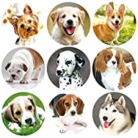 ceiba tree 200 Pcs Dog Stickers Adorable Live Puppy Sticker for Classroom