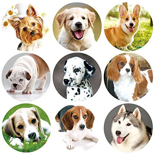 ceiba tree 200 Pcs Dog Stickers Adorable Live Puppy Sticker for Classroom
