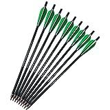 SHARROW 12 Piezas Flechas de Ballesta 16 Pulgadas 17 Pulgadas Flechas de Carbono Pernos Flechas para Ballesta