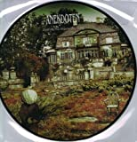 Until All the Ghosts Are Gone: Picture Disc