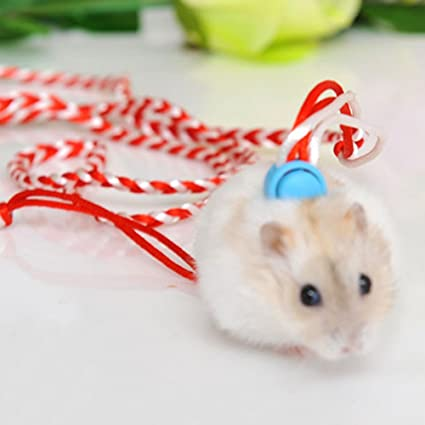 Syrian Hamster Gerbil Rat Mouse Chinchillas Guinea Pig Squirrel Harness  with Leashes Adjustable