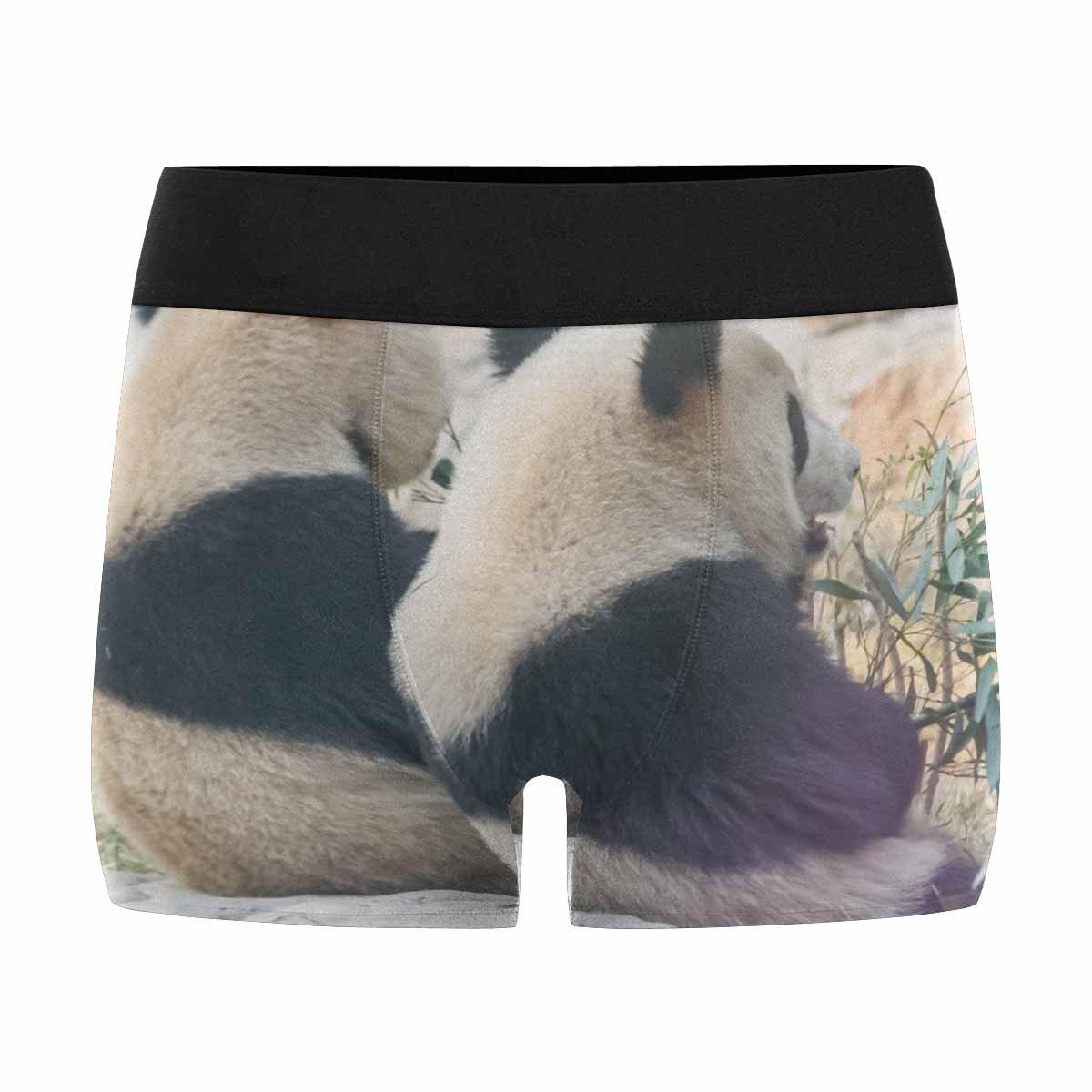 XS-3XL China INTERESTPRINT Boxer Briefs Mens Underwear Cub of Giant Panda Bear Playing in Zoo Beijing