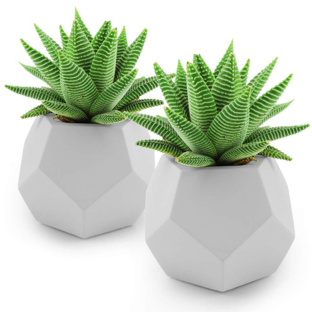 Slice of Goodness Geometric Succulent Planter Pot – Small Smooth Cement Plant Pots for Succulents and Cactus Plants – Plants Not Included – Set of 2-4 x 3.5