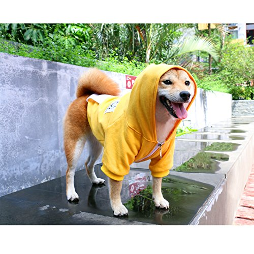 iChoue Pets Dog Clothes Hoodie Hooded French Bulldog Costume Pullover Cotton Winter Warm Coat Puppy Corgi Clothing - Yellow/Size M by iChoue (Image #8)'