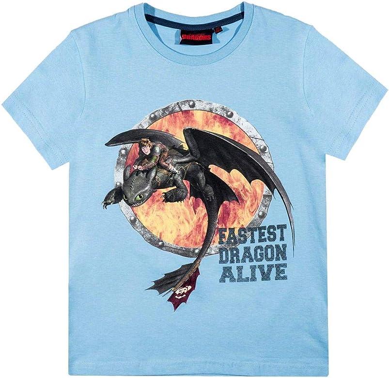 Dragons Niños Camiseta | Dreamwork Tamaño 116-152 | Cómo Entrenar a tu Dragón, Color:Azul pálido, T-Shirt 86-164:152: Amazon.es: Ropa y accesorios