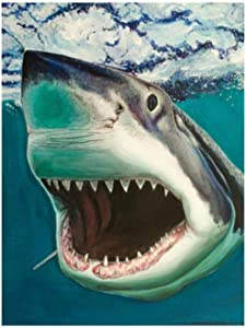 ZBBSHOP DIY 5D Diamond Painting Marine Life Shark Kits for Gift Home Decor Full Drill Rhinestone Crystal Embroidery Pictures Cross Stitch Art 40x50cm DIY 5D Diamond Painting Kits