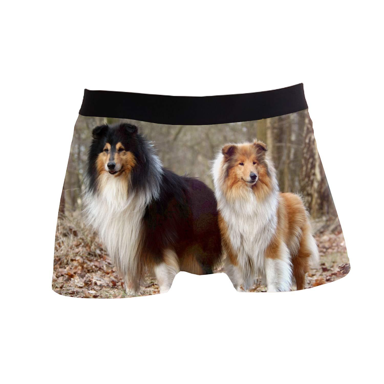 SHRGRGR Boxer Briefs Forest Shelties Mens Underwear Polyester Spandex Pouch S-XL