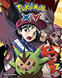 Pokémon X•Y, Vol. 7 (Pokemon)