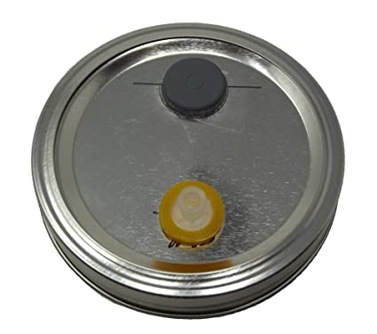 Amazon.com: Líquido cultura Jar tapas para Seta cultivo ...
