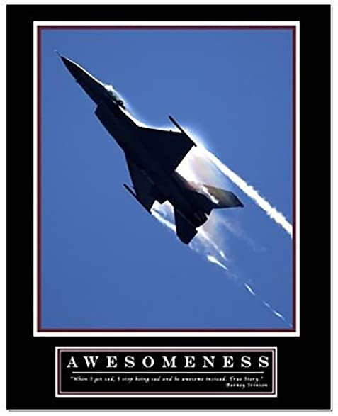 Amazoncom Awesomeness Motivational Poster as seen in Barney