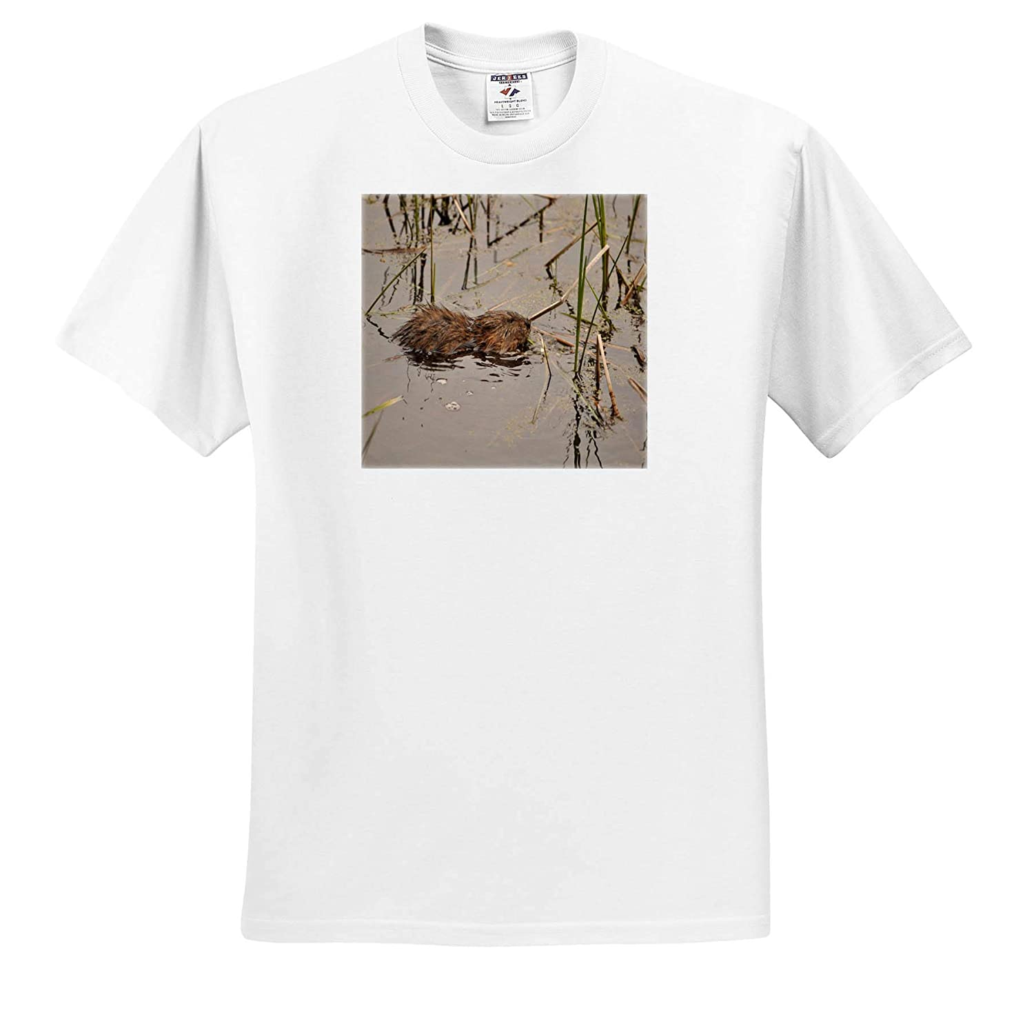 Adult T-Shirt XL ts/_314218 Animals Baby Muskrat Taking a Swim 3dRose Dreamscapes by Leslie