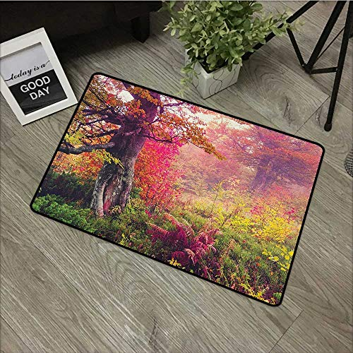 Square door mat W35 x L59 INCH Forest,Fairy Majestic Landscape with Autumn Trees in Forest Natural Garden in Ukraine, Red Green Brown Our bottom is non-slip and will not let the baby slip,Door Mat Car ()