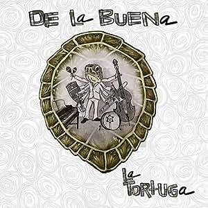 Tortuga S Latin Kitchen