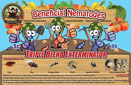 NaturesGoodGuys Live Beneficial Nematodes Hb+Sc+Sf - 50 Million by NaturesGoodGuys