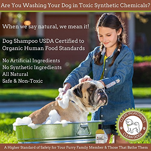4-Legger-Certified-Organic-Dog-Shampoo-with-Conditioner-All-Natural-Cedar-Dog-Shampoo-with-Peppermint-Eucalyptus-and-Aloe-for-Normal-to-Dry-and-Itchy-Skin-Concentrated-Non-Toxic-16-oz