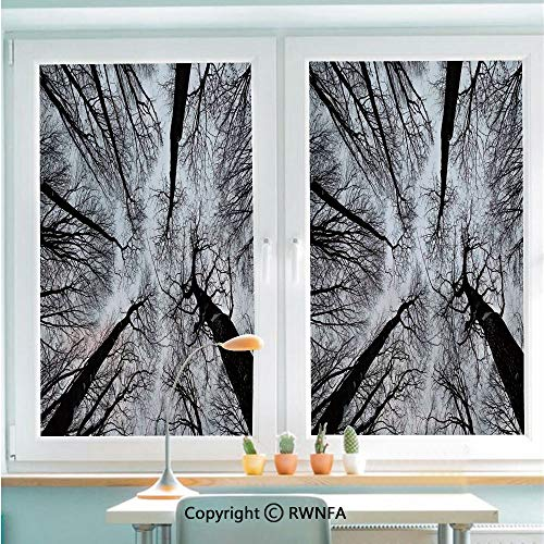 RWNFA Window Film No Glue Glass Sticker Scary Winter Tops of The Trees Dark Dramatic Silhouettes Enchanted Image Static Cling Privacy Decor for Kitchen Bathroom 22.8x35.4inches,Black Grey
