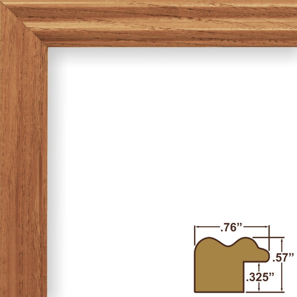 Amazon.com - Craig Frames 200ASH 9 by 28-Inch Picture Frame, Wood ...