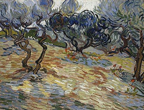 van gogh poster olive trees