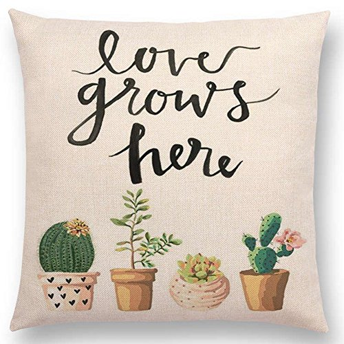 Aremazing Inspirational Quote Succulents Plants Cactus Cotton Linen Home Decor Pillowcase Throw Pillow Cushion Cover 18 x 18 Inches (Love Grows Here)