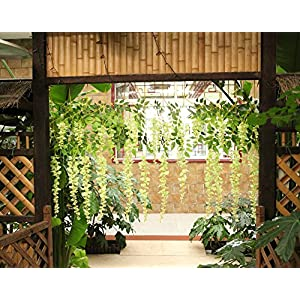 Kuqqi 3.6 Feet Artificial Silk Wisteria Vine Ratta Silk Hanging Flower Wedding Decor,6 Pieces,(White) 4