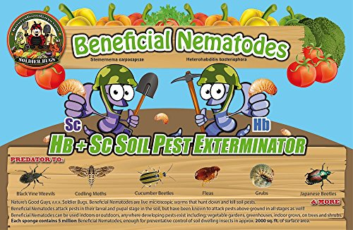 50-million-live-beneficial-nematodes-blend-hb-sc-kills-over-200-different-species-of-soil-dwelling-a