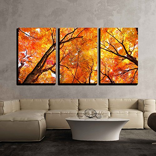 wall26 - 3 Piece Canvas Wall Art - Maple Tree in Autumn - Modern Home Decor Stretched and Framed Ready to Hang - 24