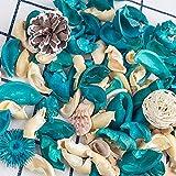 DomeStar Sea Shell Potpourri Bag, Fresh Ocean Scent