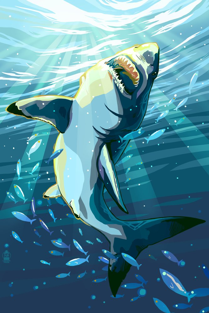 Stylized Great White Shark (12x18 Art Print, Wall Decor Travel Poster)