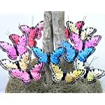 BANBERRY-DESIGNS-Craft-Butterflies-Butterfly-Floral-Picks-Set-of-12-Colorful-Glitter-Artificial-Butterflies-Attached-to-Wire-Stems-Butterfly-Centerpieces-Butterfly-DIY-Feather-Butterflies