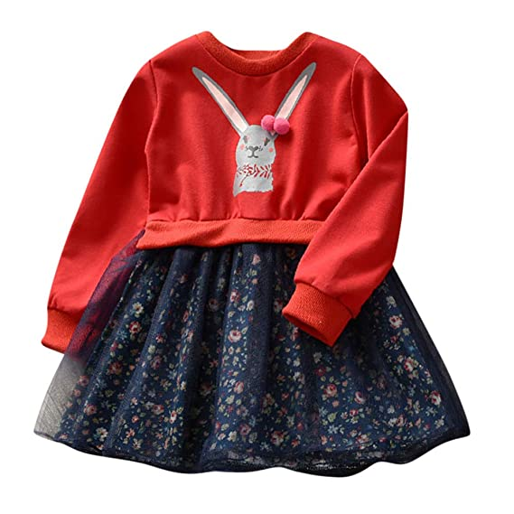 BBsmile Camisetas para Bebe Ropa Bebe Niña Otoño Invierno Ropa de Invierno Dibujos Animados de bebé niña Bunny Floral Princess Dress Ropa de Trajes: ...