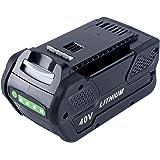 Lasica 5000mAh 40V Lithium Battery 29472 for GreenWorks G-MAX 40V Cordless Tools 21332 25302 20312 20302 24312 22332 20292 22342 GreenWorks 40v Battery G-MAX 29472 29462 L-600