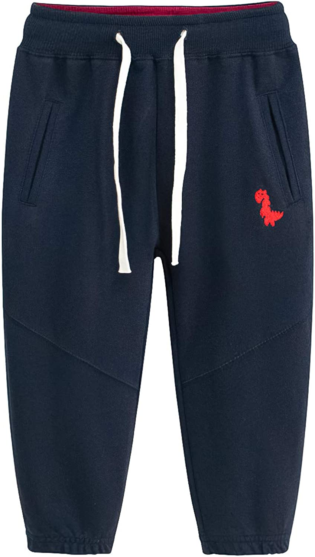 Yilaku Conjunto Deporte ni/ño 2piezas Disfraz de Dinosaurio ni/ño Sudaderas Camiseta fornite+Pantalon Chandal Ropa ni/ño 2-10 a/ños