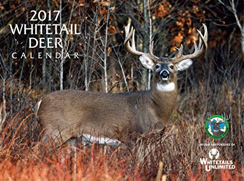 2017 Whitetail Deer Calendar