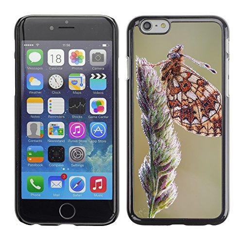 """Premio Sottile Slim Cassa Custodia Case Cover Shell // F00019113 Belle papillon // Apple iPhone 6 6S 6G 4.7"""""""