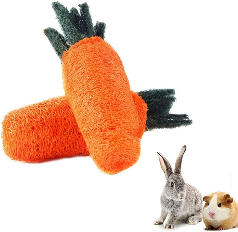 Colored Loofah Slices Guinea Pig Hamster Bunny Rabbit Chinchilla Toy Loofa Chew Toy for Small Animals