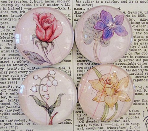 Handcrafted Glass Magnet Set of Four Flowers, Original Art - Handcrafted Glass Magnet Set - Rare Earth Magnet - Rose - Daffodil - Violet - Lily of the ()
