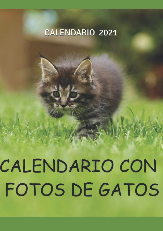 Calendario 2021 (Calendarios): Amazon.es: 2021, Calendario ...