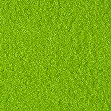 Polar Fleece Solid Lime Fabric By The Yard