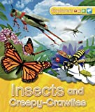 Explorers: Insects and Creepy-Crawlies, Jinny Johnson and Peter Bull, 0753471701