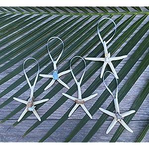 61u95jsYxJL._SS300_ 50+ Starfish Christmas Ornaments