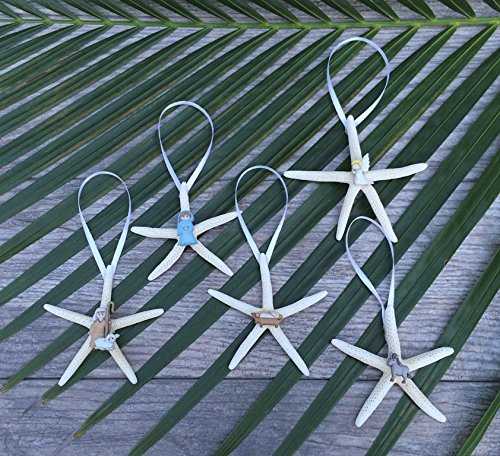 61u95jsYxJL Amazing Starfish Christmas Ornaments