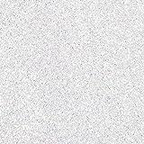 Glitter, White Heat Transfer Vinyl 19'' 1 Yard, 5 Yards, 10 Yards (10 Yards)