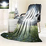 300 GSM Fleece Blanket empty night grand soccer arena with flash Super Soft Warm Fuzzy Lightweight Bed or Couch Blanket(60''x 50'')