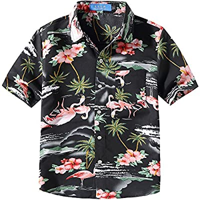 SSLR Big Boy's Flamingos Button Down Short Sleeve Aloha Hawaiian Shirt