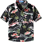 SSLR Big Boy's Pink Flamingos Button Down Casual Short Sleeve Hawaiian Shirt (Small(8), Black)