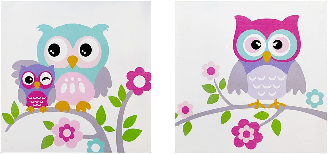 Mi-Zone, Wise Wendy 2 Piece Set Wall Art Print Deco Box, Modern Funny Animal Design, Silly Owls Pose Painting Living Room Décor, Hot Pink Multi, 12 x 12