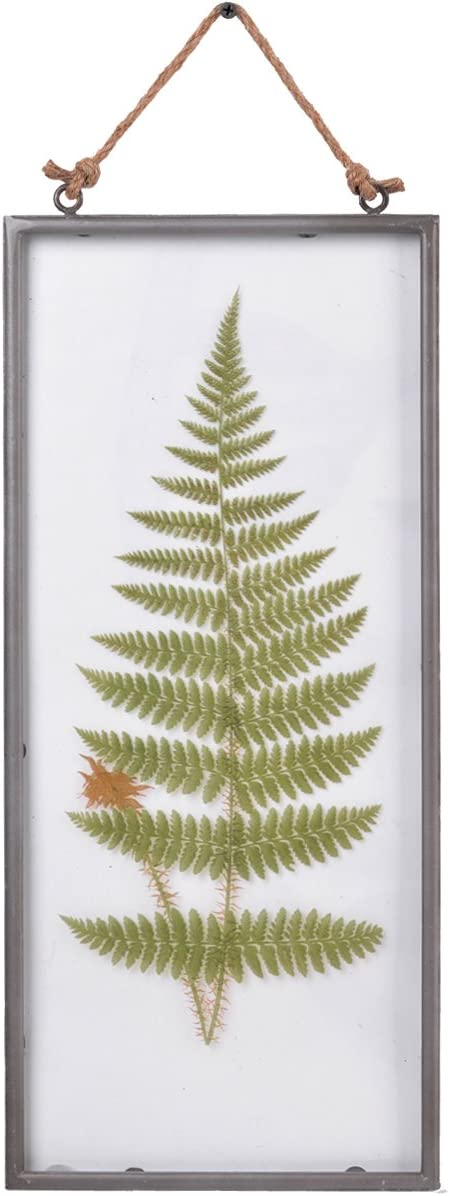 "NIKKY HOME Vintage Framed Wall Glass Fern Botanical Wall Art with Rope 8"" x 18"""