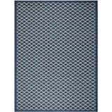 Safavieh Courtyard Collection CY6919-268 Navy and Beige Indoor/Outdoor Area Rug (9′ x 12′) Review