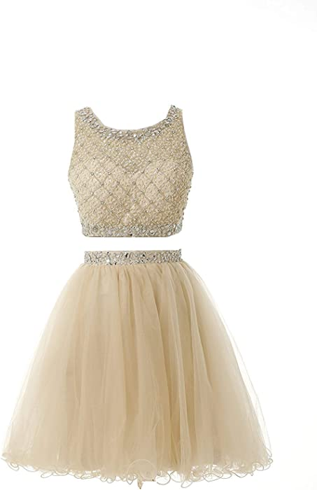 884c1495945 Two Piece Short Homecoming Dresses with Beaded Bodice Champagne Tulle Prom  Dress Short Party Dresses Children