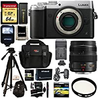Panasonic GX8 LUMIX Interchangeable Lens DSLM Camera Silver + Panasonic Lumix G X Vario 12-35mm f/2.8 Asph Lens + Transcend 64 GB + Polaroid Tripod + Polaroid Battery + Charger + Accessory Bundle Basic Intro Review Image